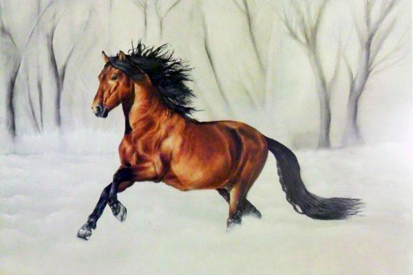 Oil painting on canvas 60 cm x 80 cm